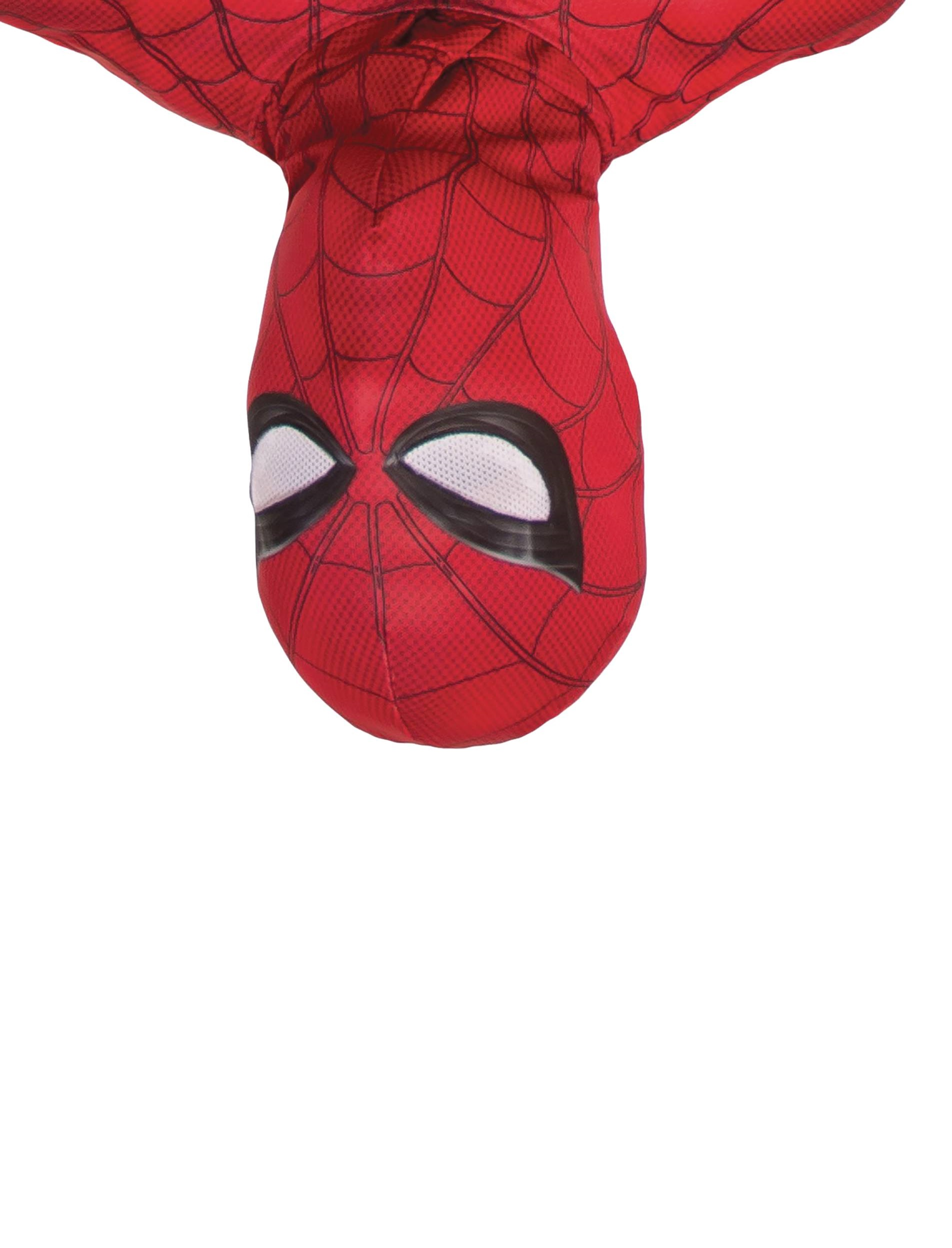 Spider-Man  - Homecoming Adult Cowl Costume Accessory