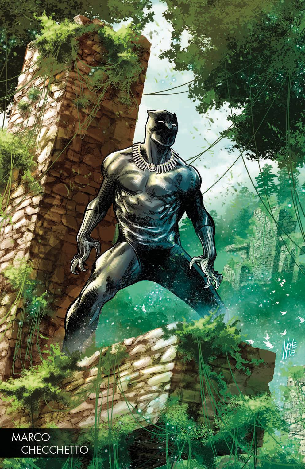 Black Panther (Vol. 7)  #170 Variant